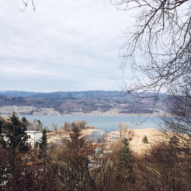 Vue sur le lac de Bienne