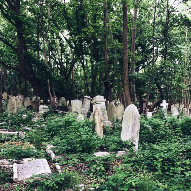 Forêt de pierres tombales dans le cimetière de Highgate, à Londres