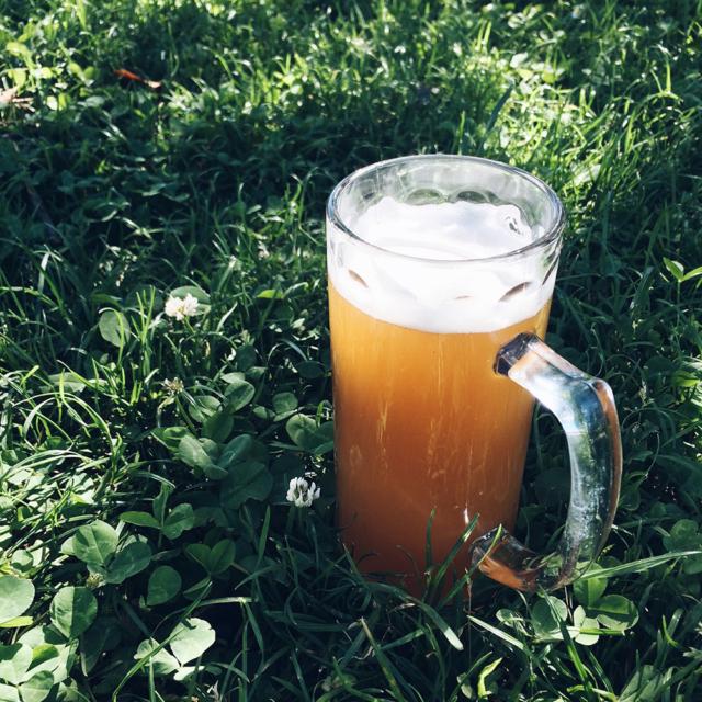 Choppe de bière posée dans l'herbe