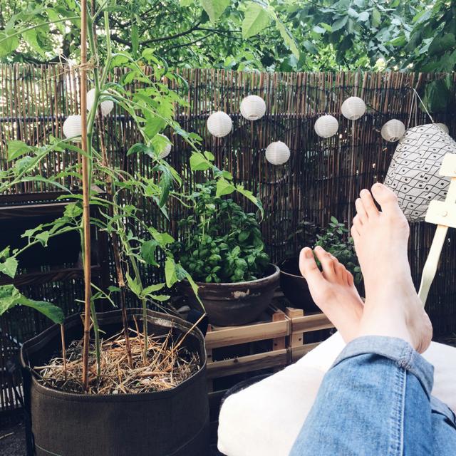 Moment de détente sur le balcon, au milieu des plantes