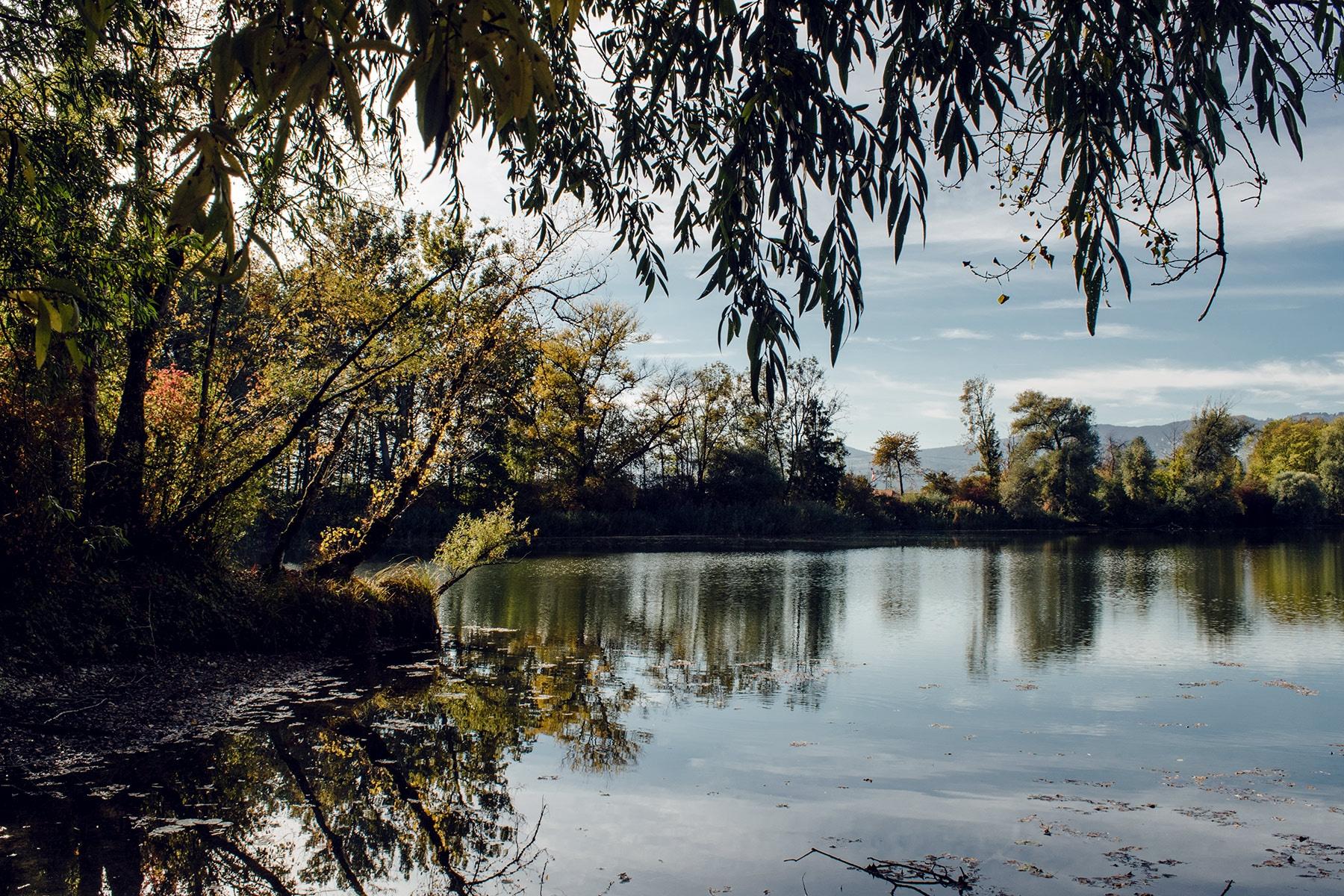 """Le Baggersee, """"l'étang de la carrière"""", à proximité de Büren an der Aare"""