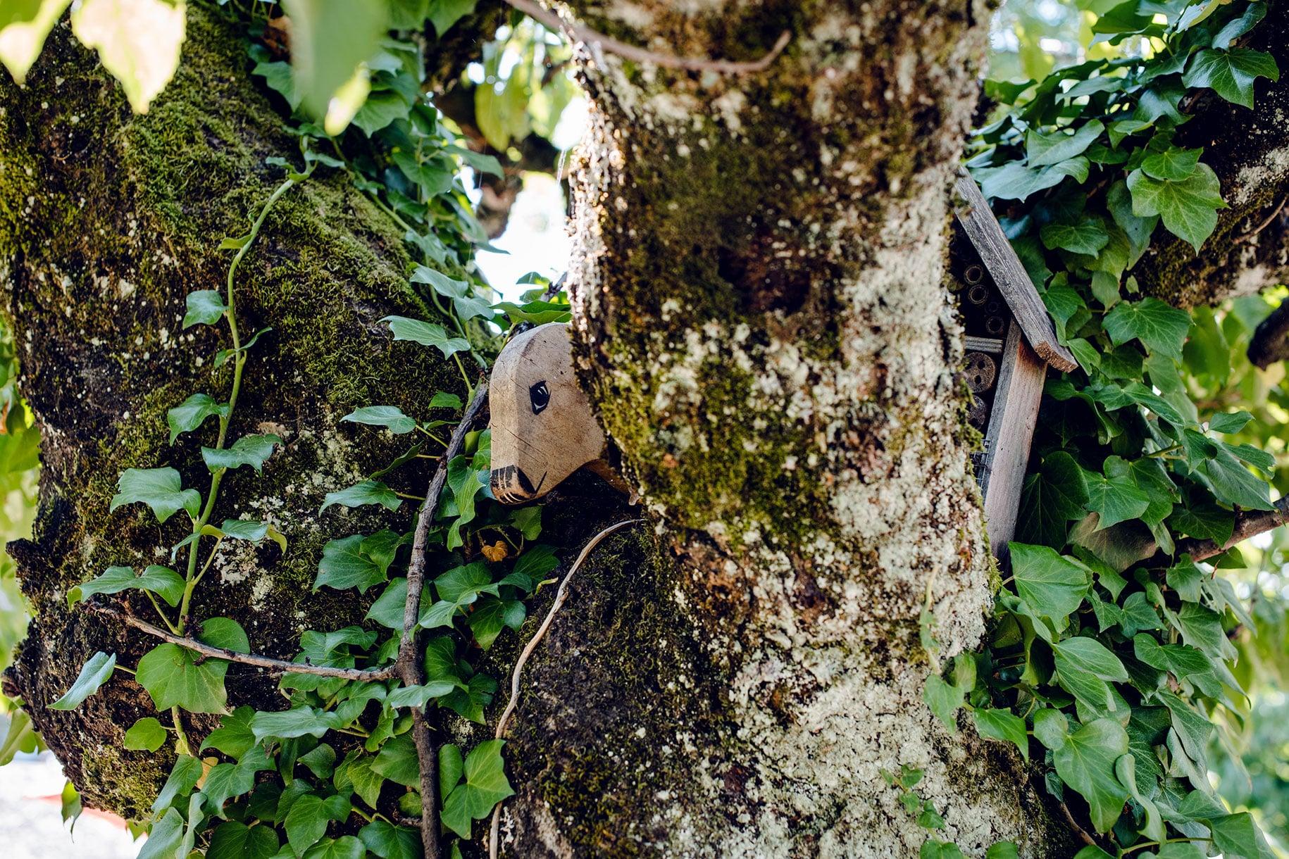 Tête de mouton à bascule en bois perchée dans un cerisier