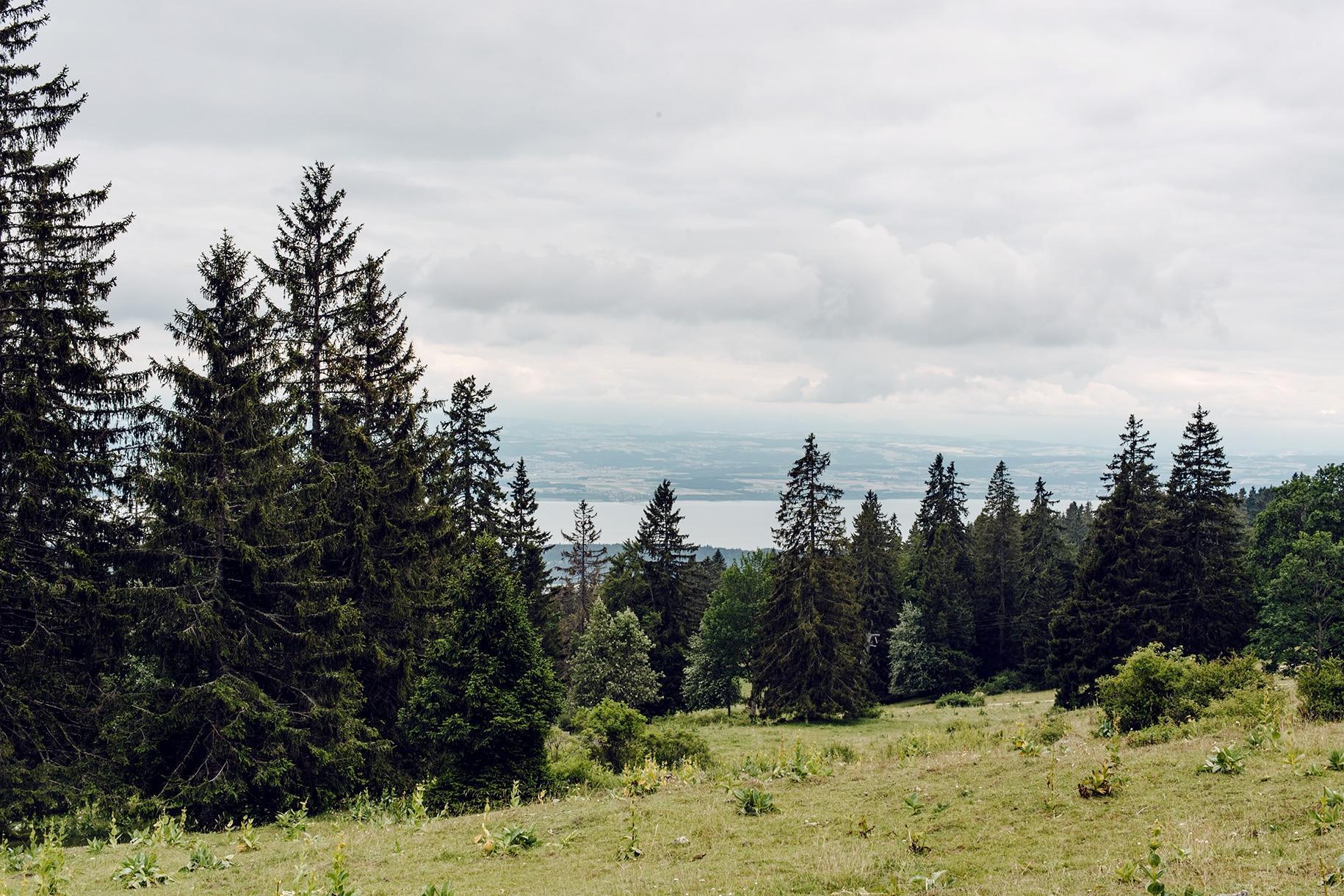 Vue sur le lac de Neuchâtel depuis les pâturages du Val de Ruz