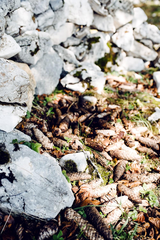 Balade sur le Grenchenberg – pommes de pin étalées par terre au milieu d'un cercle de pierres