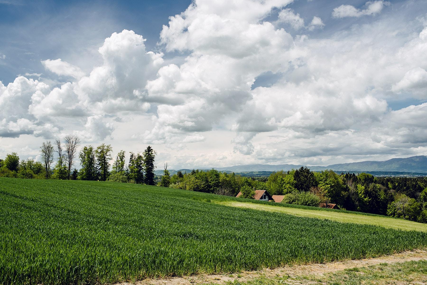 Vue sur la campagne bernoise et soleuroise