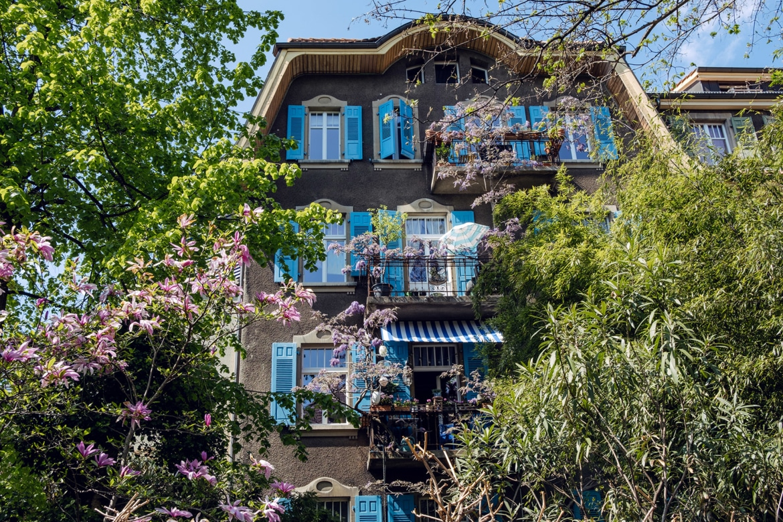 Une grande maison aux volets bleus, en partie cachée derrière la végétation