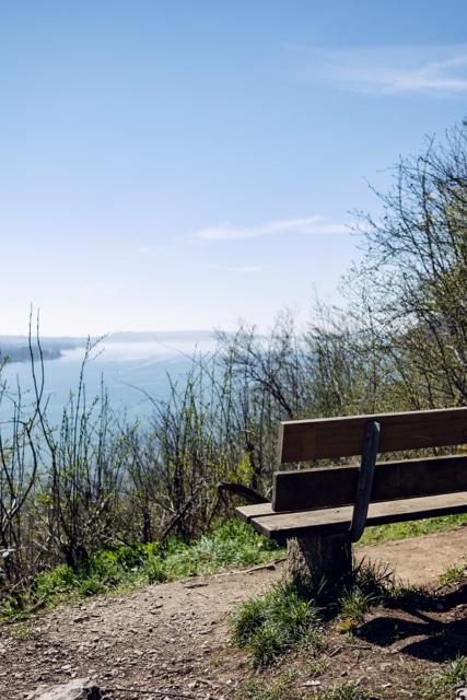 Vue sur le lac de Bienne depuis le Pavillon