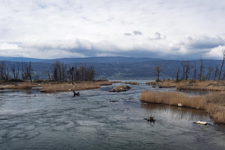 Bord du lac de Bienne à proximité de la centrale hydroélectrique de Hagneck