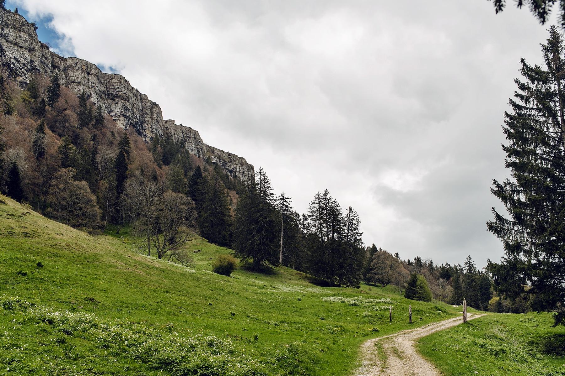 Randonnée au pied des falaises du Grenchenberg