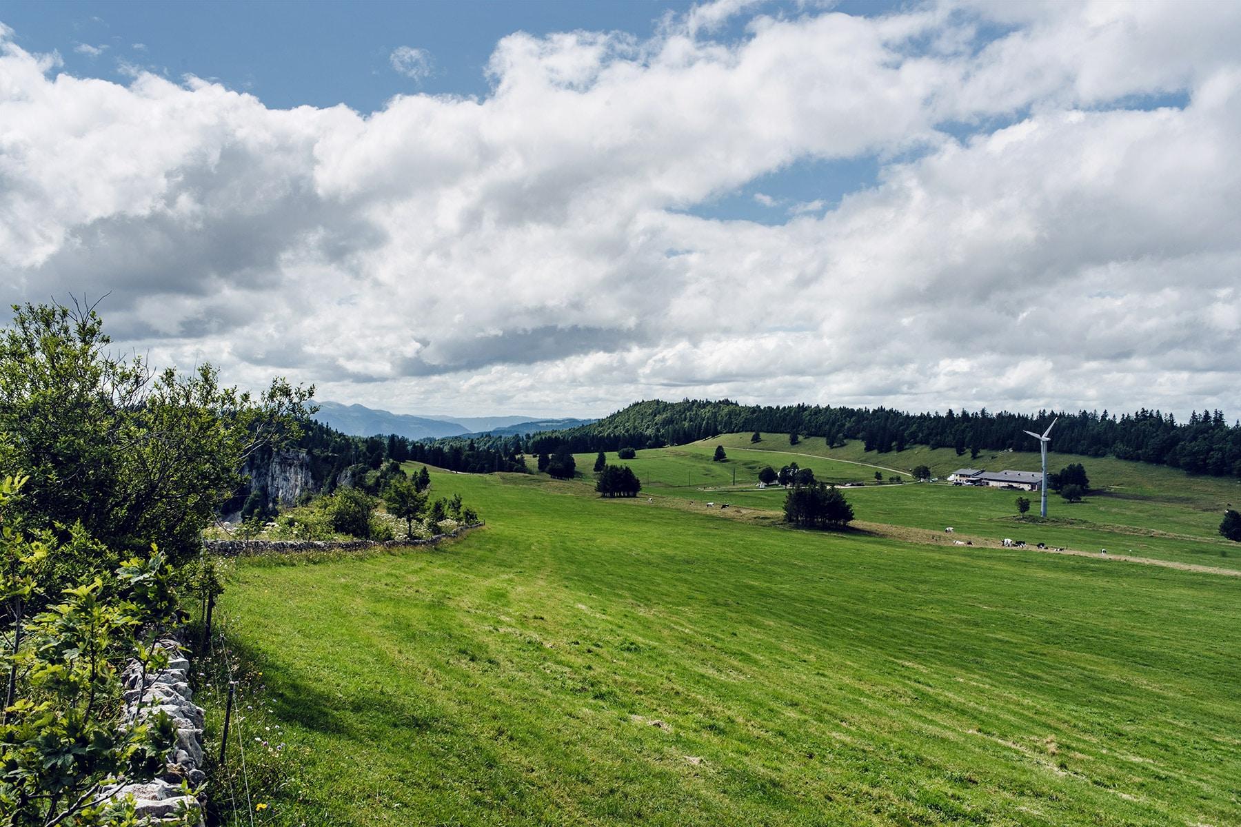 Paysage 100% helvétique: reliefs boisés du Jura et pâturages